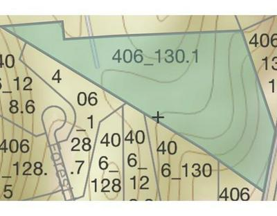 LOT 0 NORTH BROOKFIELD ROAD, Oakham, MA 01068 - Photo 1