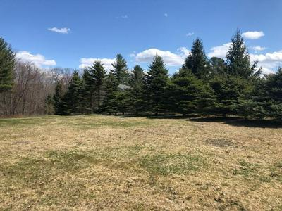 2 WENDY PL, Leicester, MA 01542 - Photo 2
