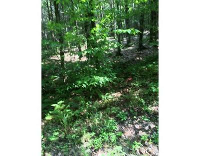 3 PETTICOAT HILL RD, Williamsburg, MA 01096 - Photo 1