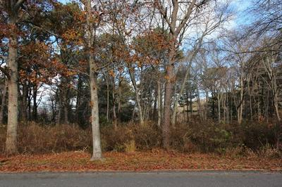 11 NORSE PINES DR, EAST SANDWICH, MA 02537 - Photo 2