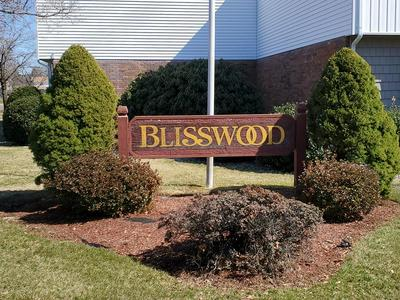 510 BLISSWOOD VILLAGE DR # 510, LUDLOW, MA 01056 - Photo 1
