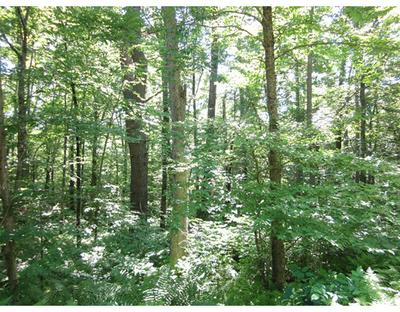 LOT 39 COFFEY HILL - MAP 19 - LOT 39, Ware, MA 01082 - Photo 2