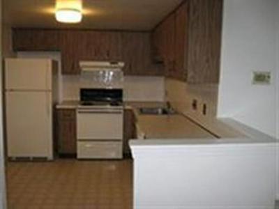 382 MASSACHUSETTS AVE APT 504, Arlington, MA 02474 - Photo 1
