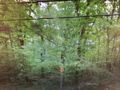0 QUADDICK TOWN FARM RD, Thompson, CT 06277 - Photo 1