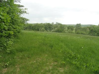 1470 GILBERTVILLE RD, NEW BRAINTREE, MA 01531 - Photo 2