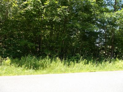 00 WILLCUT RD, Chesterfield, MA 01012 - Photo 1