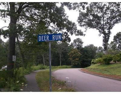 14 DEER RUN RD, Holliston, MA 01746 - Photo 2