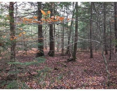 14 BISSELL RD, Chesterfield, MA 01096 - Photo 2