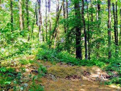0 SUNNY BROOK, Monson, MA 01057 - Photo 2