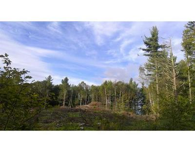 0 L:1 JOHN FORD RD, Ashfield, MA 01330 - Photo 1