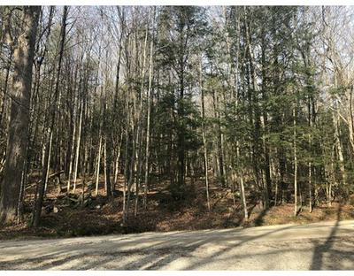 0 MOUNT RD, Chesterfield, MA 01026 - Photo 2