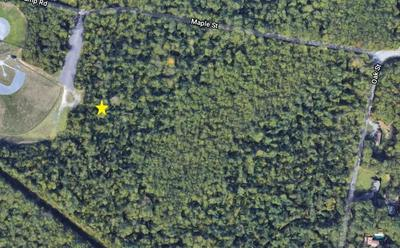 LOT 7 MAPLE ST, Dighton, MA 02715 - Photo 1