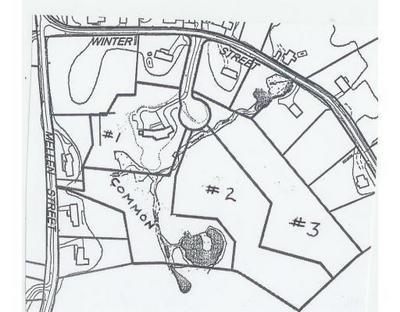 LOTS 2-3 WINTER STREET, Holliston, MA 01746 - Photo 1