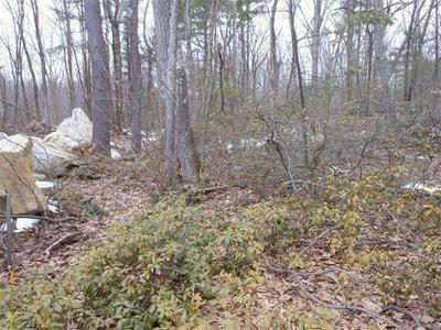 0 ( LOT 7) CONWAY DR, Leicester, MA 01524 - Photo 2