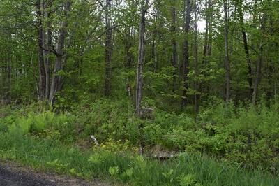 LOT 2-C CREST, Granville, MA 01034 - Photo 1