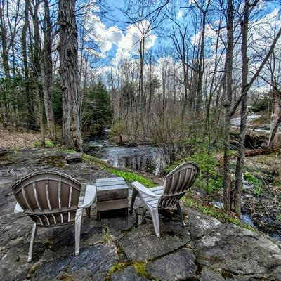 50 COLE RD, Chester, NH 03036 - Photo 2