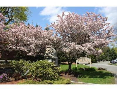 171 SWANTON ST UNIT 41, Winchester, MA 01890 - Photo 1