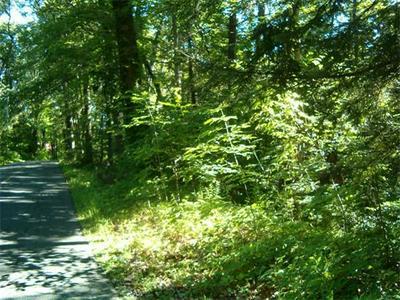 LOT 53-B PANTRY ROAD, Hatfield, MA 01038 - Photo 1