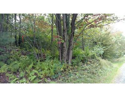 1419 MAIN RD, Granville, MA 01034 - Photo 1