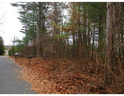 LOT A HORSESHOE CIRCLE, Ware, MA 01082 - Photo 2