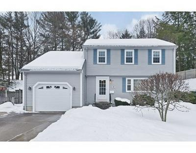 17 NARDONE RD, Needham, MA 02492 - Photo 1