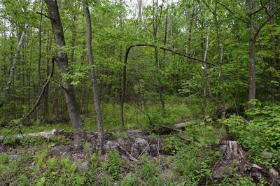 LOT 2-A CREST LANE, Granville, MA 01034 - Photo 1