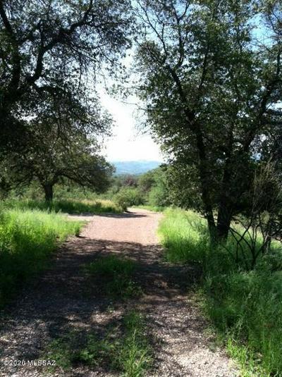 00 WOOD CANYON ROAD, Sonoita, AZ 85637 - Photo 1