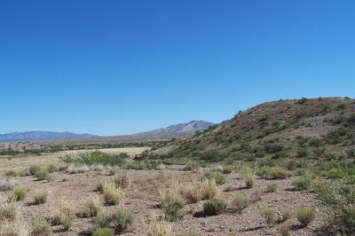 81.24AC WARPAINT PATH, Willcox, AZ 85643 - Photo 2
