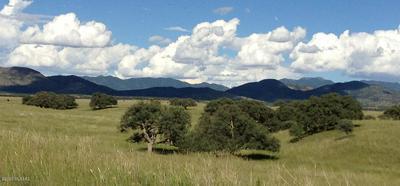 TBD FOREST ROAD 4735, Patagonia, AZ 85624 - Photo 2