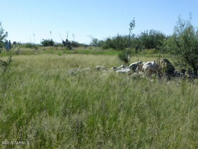 5 ACRES N COTTONTAIL (EAST 5 ACRES) LANE #0, Cochise, AZ 85606 - Photo 2