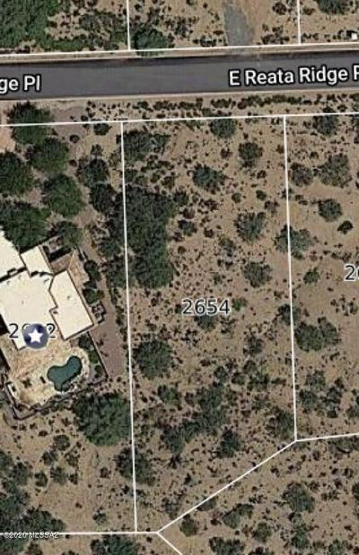 2654 E REATA RIDGE PL, Sahuarita, AZ 85629 - Photo 1