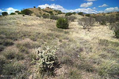 880 SIDE OATS LN, Patagonia, AZ 85624 - Photo 2