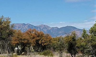 13 SIMS LN, Sonoita, AZ 85637 - Photo 2