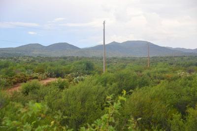 0000 S BUTTERFLY, Catalina, AZ 85739 - Photo 2