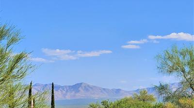 901 W VIA ALAMOS, Green Valley, AZ 85614 - Photo 2