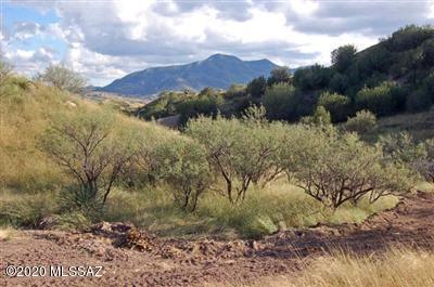 520 THREEAWN LN, Patagonia, AZ 85624 - Photo 1
