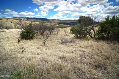 TBD TANGLEHEAD LANE, Patagonia, AZ 85624 - Photo 1