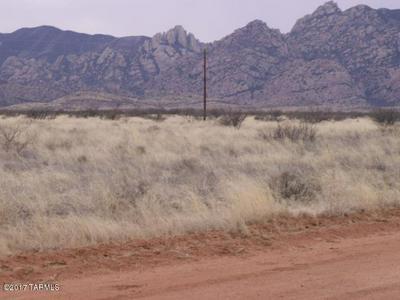 W RICHEY STREET #3 LOTS, Cochise, AZ 85606 - Photo 1