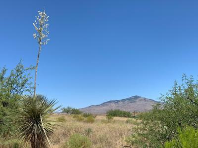 25095 E COMANCHE TRL, Benson, AZ 85602 - Photo 1