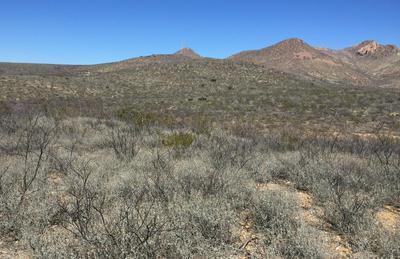 40.06 AC E GERONIMO TRAIL, Douglas, AZ 85607 - Photo 2