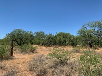 25240 E COMANCHE TRL, Benson, AZ 85602 - Photo 2