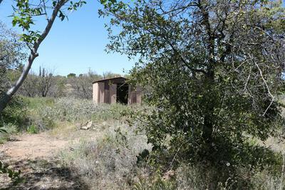 1268 N WHITE OAK PL, Oracle, AZ 85623 - Photo 2