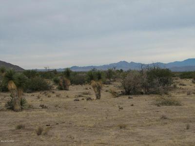 63.27 ACRE W SOAPTREE ROAD, Bowie, AZ 85605 - Photo 2