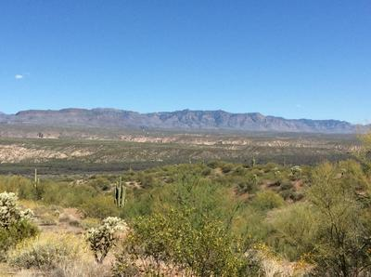 TBD E BARROWS PLACE, Mammoth, AZ 85618 - Photo 1