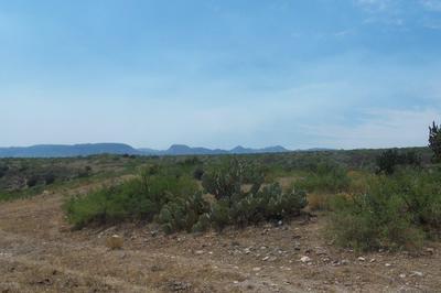 LOTS 300 & 301 S.DIRT WAGON TEAM ROAD, Willcox, AZ 85643 - Photo 1