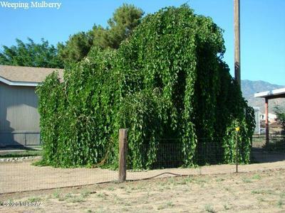 1367 W STUART TRL, Bowie, AZ 85605 - Photo 2