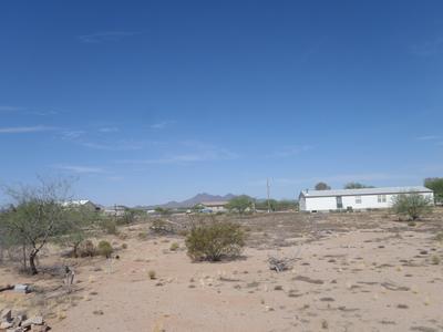 17163 W EL CAMINO DE TRES ARROYOS, Marana, AZ 85653 - Photo 2