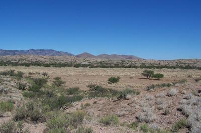 81.24AC WARPAINT PATH, Willcox, AZ 85643 - Photo 1
