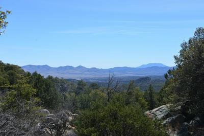 OFF FR4720 ROAD, Patagonia, AZ 85624 - Photo 2