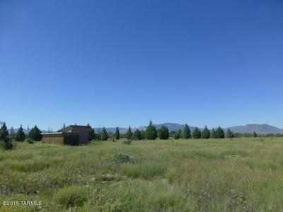 5 ACRES N COTTONTAIL (EAST 5 ACRES) LANE #0, Cochise, AZ 85606 - Photo 1